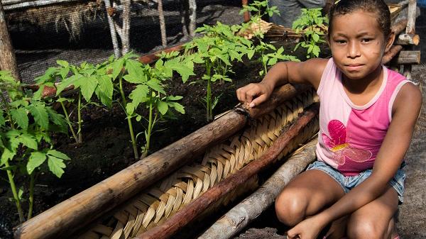 Movimento Solidário: hortas são inauguradas em Belágua