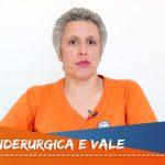 Caixa 100% Pública – Vende-se. Privatização da Siderúrgica Nacional e Vale do Rio Doce.