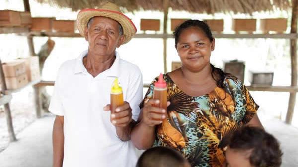 Faça sua doação para projeto de mel em Belágua