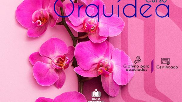 Quer aprender a cultivar orquídeas? A Rede do Conhecimento te ensina!