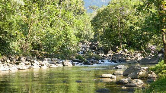 Estação Ecológica Jureia-Itatins é destino de excursão