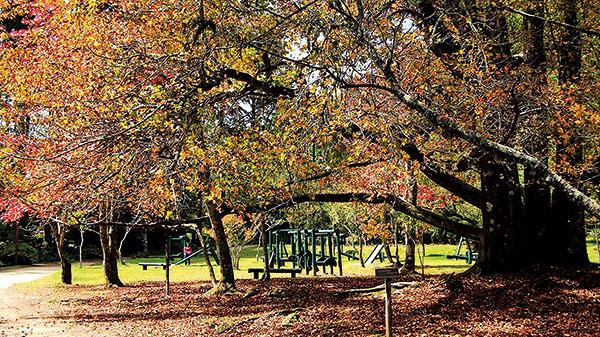 #APCEFIndica: Parque Estadual de Campos do Jordão