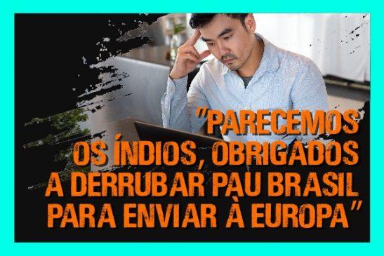 """""""Parecemos os índios, obrigados a derrubar Pau Brasil para enviar à Europa"""", dizem empregados sobre a venda da Seguridade"""