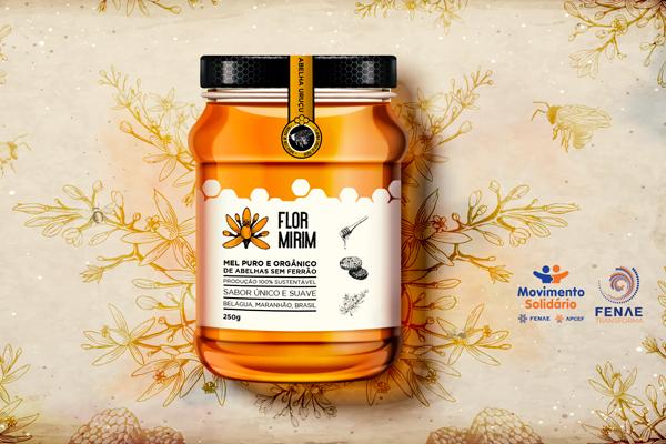 Programa Movimento Solidário lança a marca Flor Mirim e valoriza o mel de Belágua (MA)